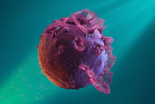 Mononucleosis EBV virus
