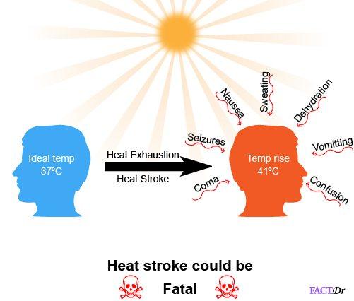 fatal heat stroke