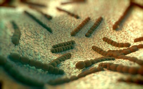 pneumonia virus