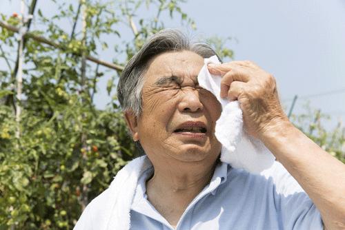 heats stroke causes