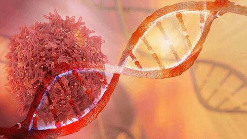 Lymphoma blood cancer