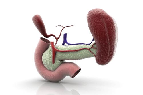 Niemann-Pick spleen