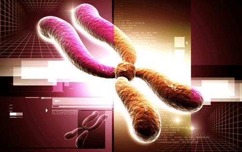 Rett syndrome chromosome