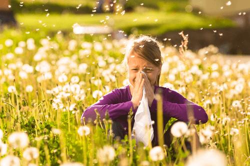 hay fever girl