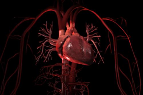 CARDIAC TAMPONADE heart
