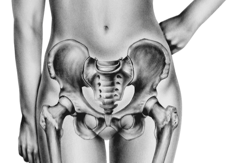 Pelvic Pain area