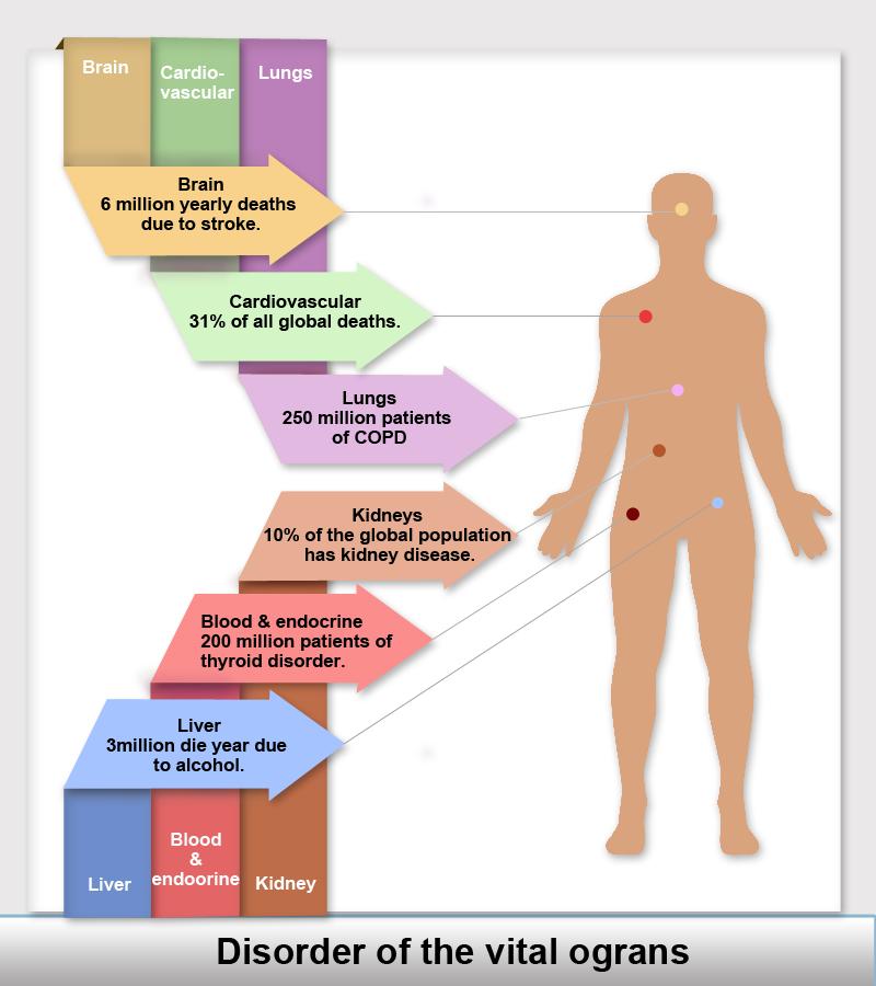 vital organs Disorder