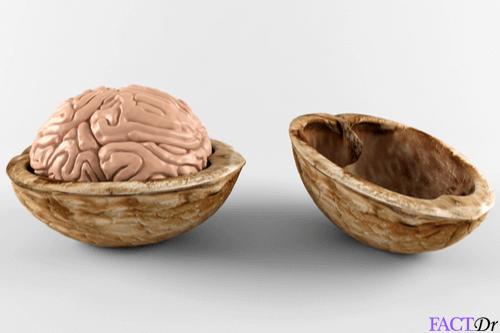 serotonin foods