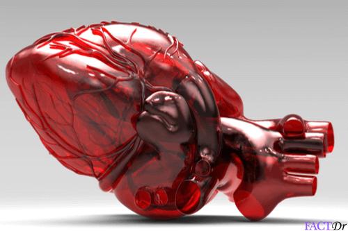 vital organ diseases