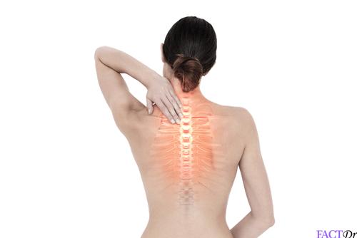 xylitol stronger bones