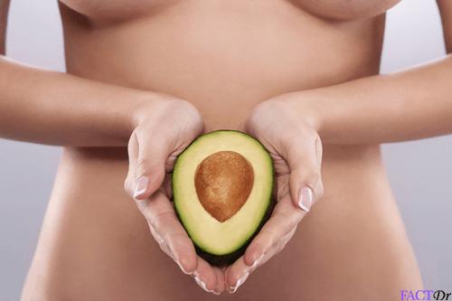 avocado fertility