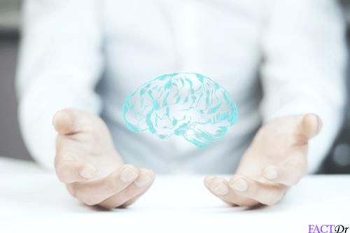 5 htp brain