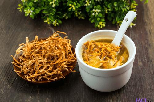 Cordyceps soup