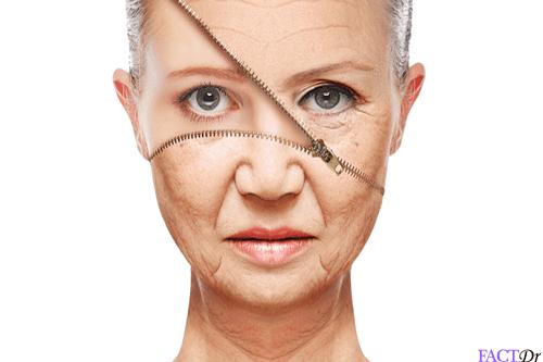 DHEA wrinkles
