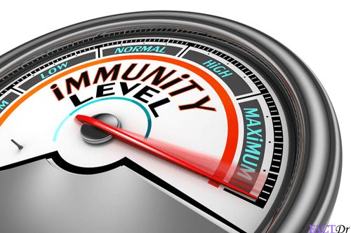 glutathione immunity