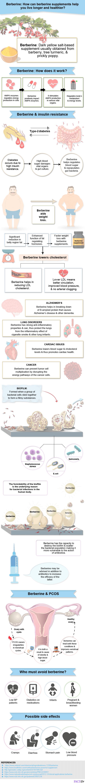 Berberine infographic