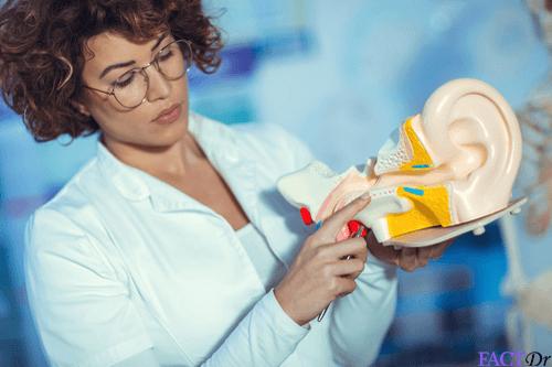 Eustachian tube : Dysfunction, blockage, treatment