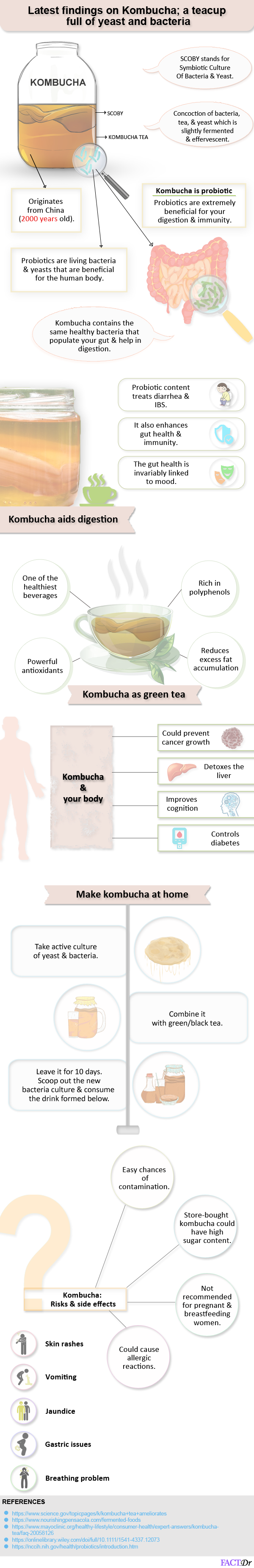Latest findings on Kombucha; a teacup full of yeast and bacteria