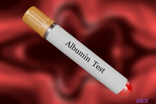 Bloodtestalbumin