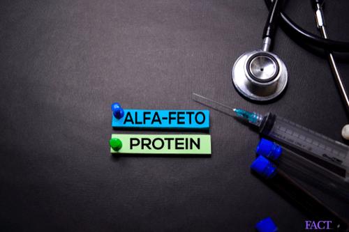 alpha feto protein test