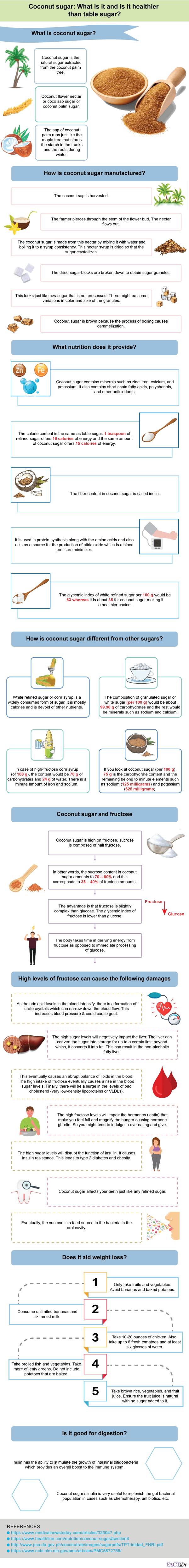 coconut sugar infographic