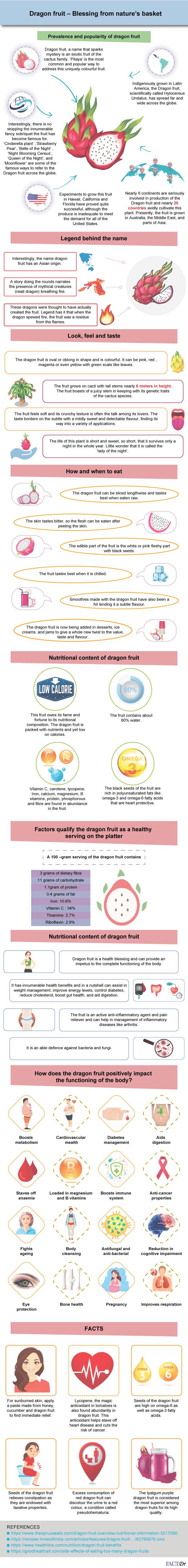 dragon fruit infographic