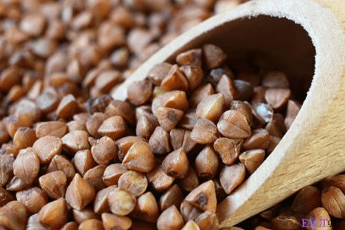 Buckwheat : Nutrition, health benefits